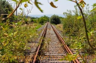 Linee ferroviarie abbandonate