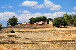 Borgo Guttadauro