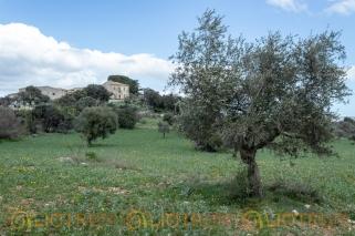 Masseria abbandonata