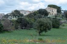 Masseria abbandonata - Urbex Sicily-17