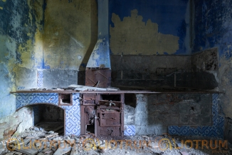 U VINU DU PATRUNI-PALMENTO ABBANDONATO-15